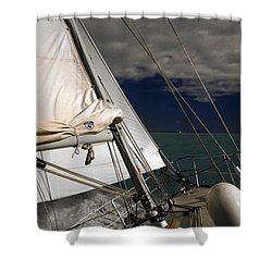 Windy Day Shower Curtain by Sally Weigand