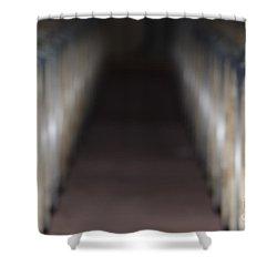 Wine Barrels In Line Shower Curtain by Mats Silvan