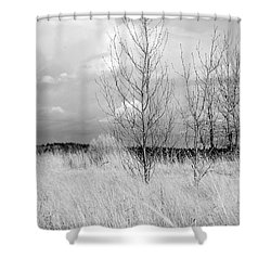 Winter Bare Shower Curtain
