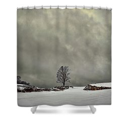 Winter Blues Shower Curtain by Evelina Kremsdorf