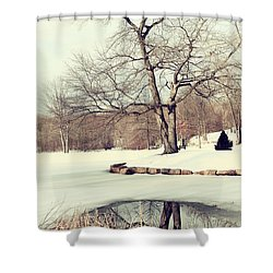 Winter Day In The Park Shower Curtain by Karol Livote
