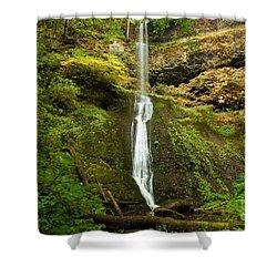 Winter Falls Shower Curtain by Adam Jewell