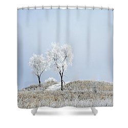 Winter Frost Shower Curtain by Julie Palencia