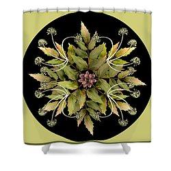 Winter Mandala Shower Curtain