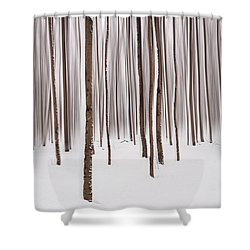 Winter Shower Curtain by Mircea Costina Photography