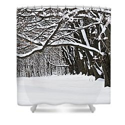 Winter Park With Snow Covered Trees Shower Curtain by Elena Elisseeva