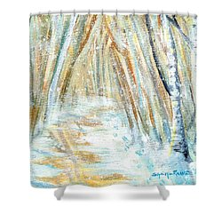 Shower Curtain featuring the painting Winter by Shana Rowe Jackson