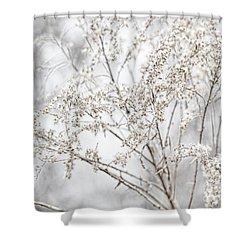 Winter Sight Shower Curtain