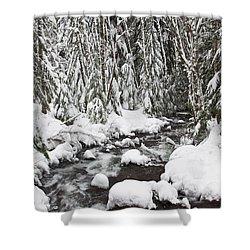 Winter Snow Along Still Creek In Mt Shower Curtain by Craig Tuttle