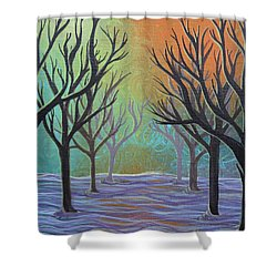 Winter Solitude 11 Shower Curtain