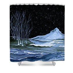 Winter Solstice Shower Curtain by Brenda Owen