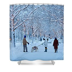 Shower Curtain featuring the photograph Winter Twilight Walk by Susan Cole Kelly