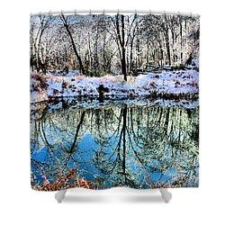 Winter Wonder Shower Curtain by Kristin Elmquist