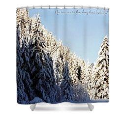 Winter Wonderland Austria Europe Shower Curtain by Sabine Jacobs