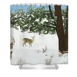 Wintering Whitetails Shower Curtain
