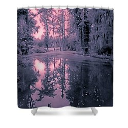 Winterland In The Swamp Shower Curtain by DigiArt Diaries by Vicky B Fuller