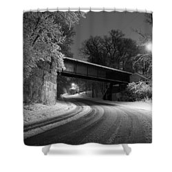 Winter's Beauty Shower Curtain by Joel Witmeyer