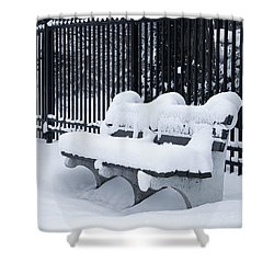 Winter's Quiescence Shower Curtain by Dale Kincaid