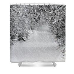 Shower Curtain featuring the photograph Winter's Trail by Elizabeth Winter