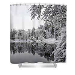 Wintery Reflections Shower Curtain