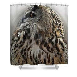 Wise Forest Owl Alicante Region Spain Shower Curtain