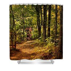 Wishing Path Shower Curtain by Jai Johnson