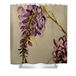 Shower Curtain featuring the painting Wisteria by Betty-Anne McDonald