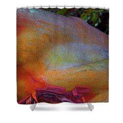 Shower Curtain featuring the digital art Wonder by Richard Laeton
