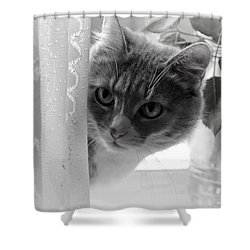Wondering. Kitty Time Shower Curtain by Jenny Rainbow