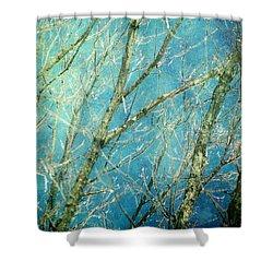 Wonderland Shower Curtain by Amy Tyler