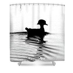 Shower Curtain featuring the digital art Wood Duck  by Lizi Beard-Ward