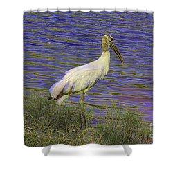 Wood Stork By The Pond Shower Curtain by Deborah Benoit
