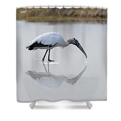 Shower Curtain featuring the photograph Wood Stork Eating by Dan Friend