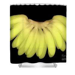 X-ray Of Bananas Shower Curtain by Ted Kinsman