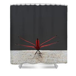 X Wing Dragonfly Shower Curtain by Nola Lee Kelsey