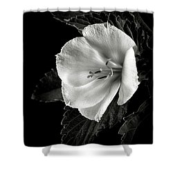 Yellow Alder In Black And White Shower Curtain
