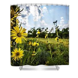 Yellow As The Sun Shower Curtain by CJ Schmit