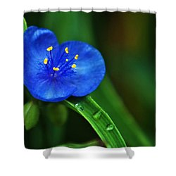 Yellow Blue And Raindrops Shower Curtain