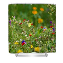 Shower Curtain featuring the photograph Yellow Butterfly In Meadow by John  Kolenberg