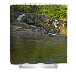 Yellow Dog Falls 4232 Shower Curtain by Michael Peychich