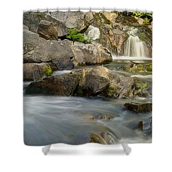 Yellow Dog Falls 4246 Shower Curtain by Michael Peychich