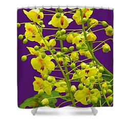 Shower Curtain featuring the photograph Yellow Flower by Manuela Constantin