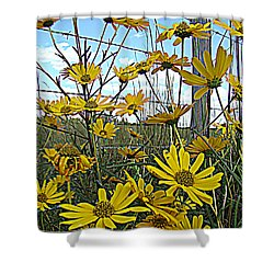 Shower Curtain featuring the photograph Yellow Flowers By The Roadside by Alice Gipson