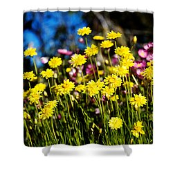 Yellow Flowers Shower Curtain by Yew Kwang
