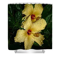 Shower Curtain featuring the photograph Yellow Hibiscus After The Rain by Renee Trenholm