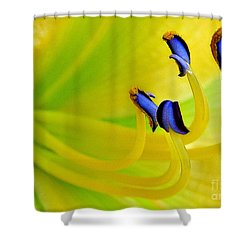 Yellow Lily Shower Curtain by Judi Bagwell
