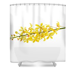 Yellow Orchid Bunch Shower Curtain by Atiketta Sangasaeng