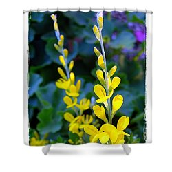 Shower Curtain featuring the photograph Yellow Plumes by Judi Bagwell