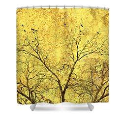 Yellow Wall Shower Curtain by Skip Nall
