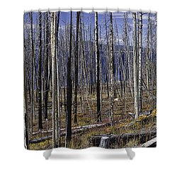 Yellowstone Lake Colors Shower Curtain